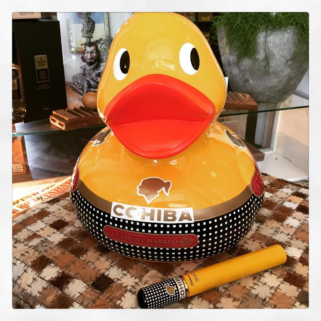 Do You Like Our Little Cohiba Mascot Lcdh Maastricht Is Supporting The Charity Organisations During The 2017 Maastricht Duck Ra Charity Event Cohiba Cigars