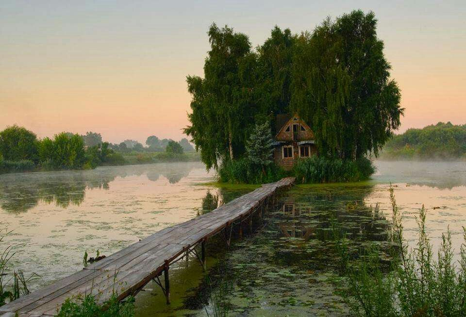 My dream house...swamp witch;}