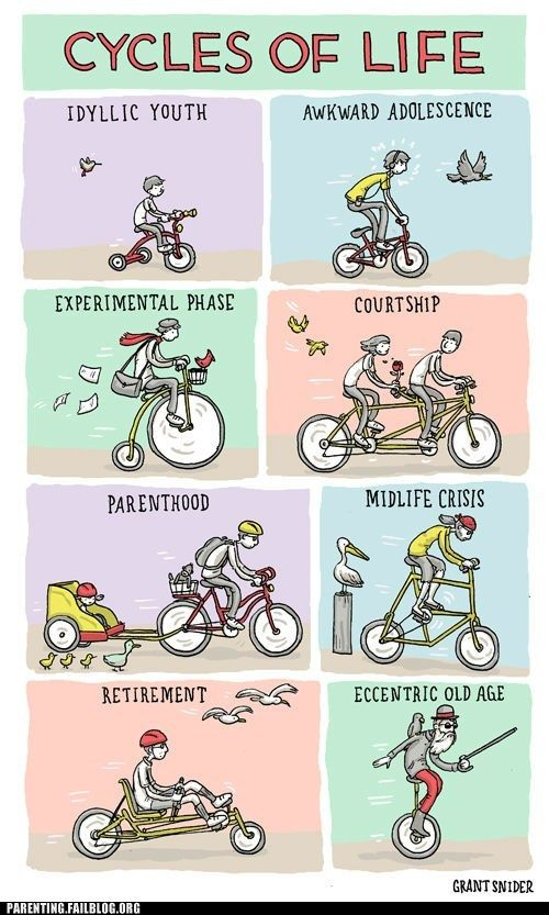 Love It All The Life Cycle Puns Ive Seen And Giggled Over All