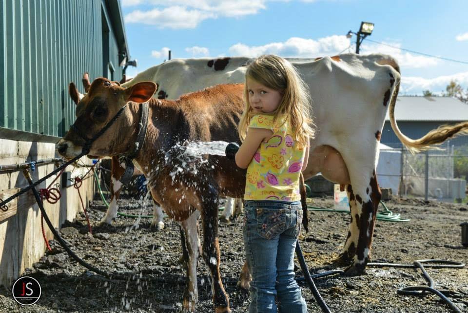 Exhibitors taking care of their animals Animals