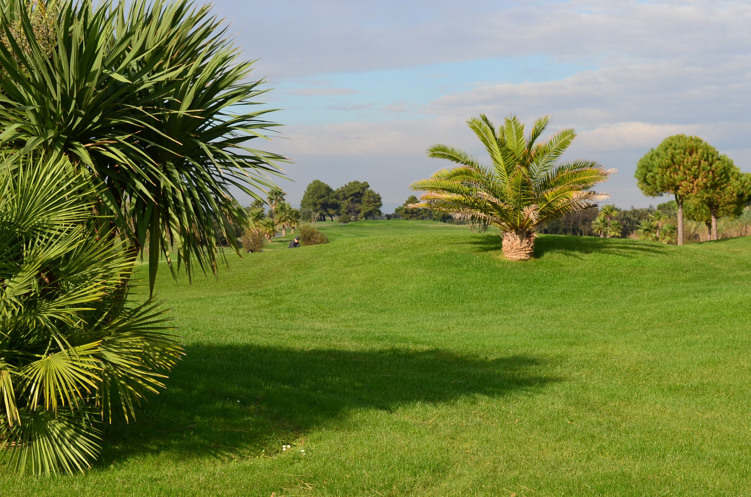 View Over The Course At Golf Du Cap D Agde South Of France Languedoc Plants