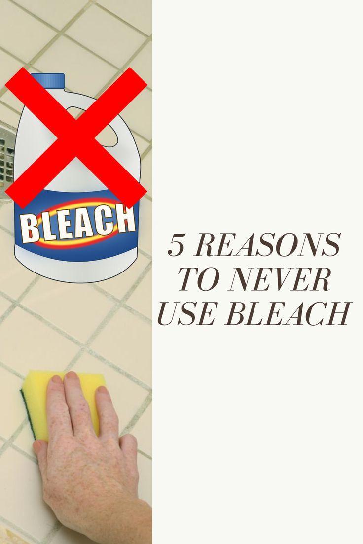 Does Chlorine Bleach Kill Mold? Mold remediation, Mold