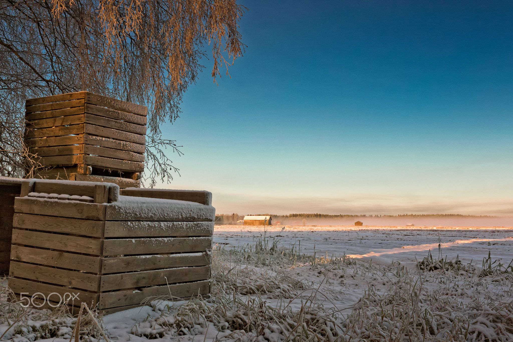 Frosty Crates By The Fields