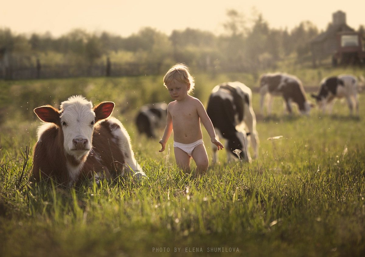 Photograph in the fields by Elena Shumilova on 500px