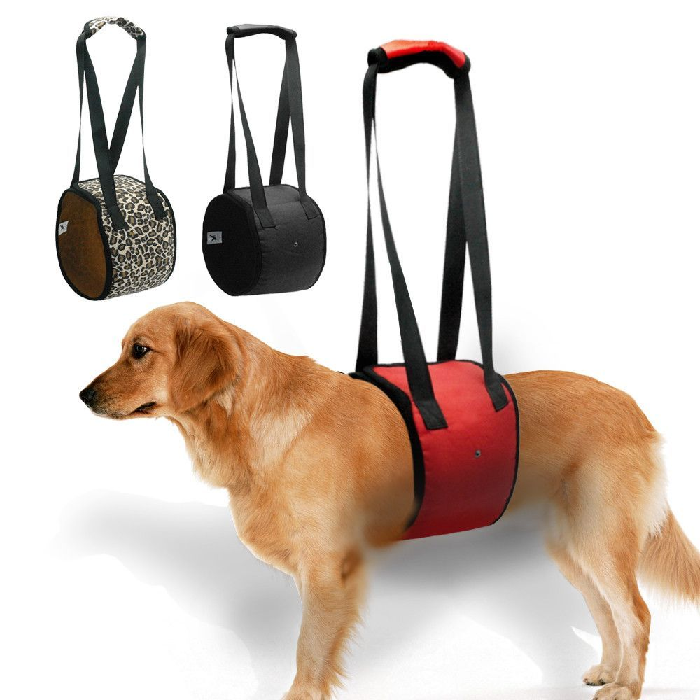 Dog Lift Support Harness For K9 Aid Lifting Older Canine | Legs and