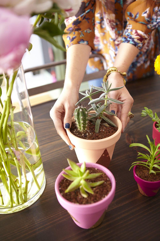 Eva Daiberl/Miss Renaissance Chicago Townhouse Tour // succulents centerpiece // DIY planters // fresh flowers // photography by Coach House Pictures
