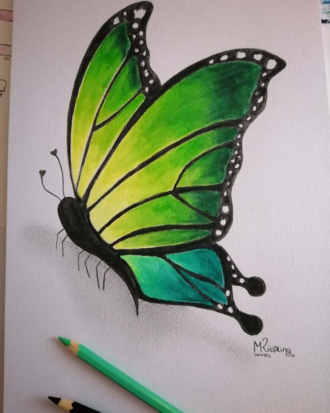 Butterfly Butterflydrawing Schmetterling Neon Aquarellstifte