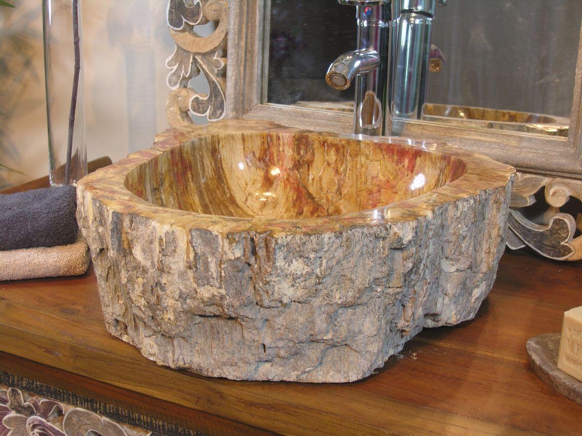 Vasque Bois Petrifie Fossilise Avec Images Bois Petrifie