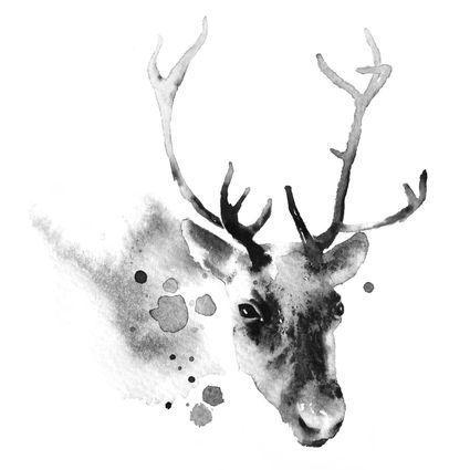 A4 -juliste Poro Mustavalkoinen | Weecos