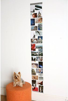 Idea to use lots of these going up stairway and edge with pretty ...