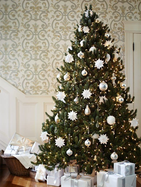 Vermont White Spruce Tree Christmas Tree Decorations Christmas Tree Drawing Balsam Hill Christmas Tree