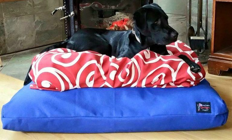 American Made Dog Supply List The Snugatti Dog Bed By Dog Crazy