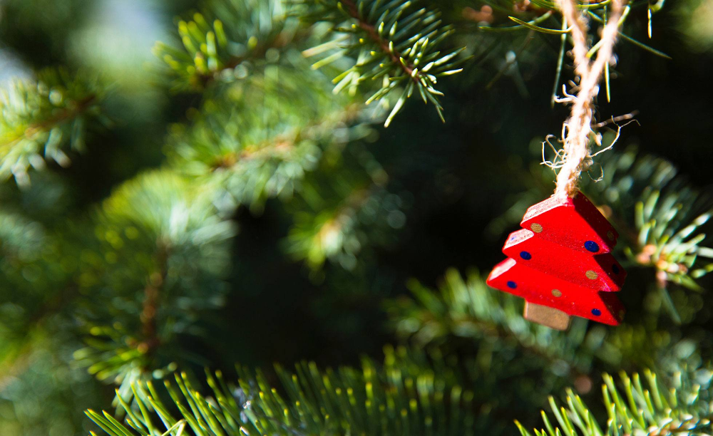 Ecofriendly Christmas tree ideas Homemade ornaments