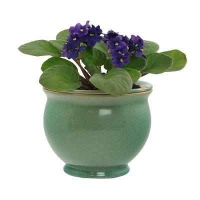 Central Garden and Pet 7.25 in. Ceramic Jade Crackle Self Watering ...