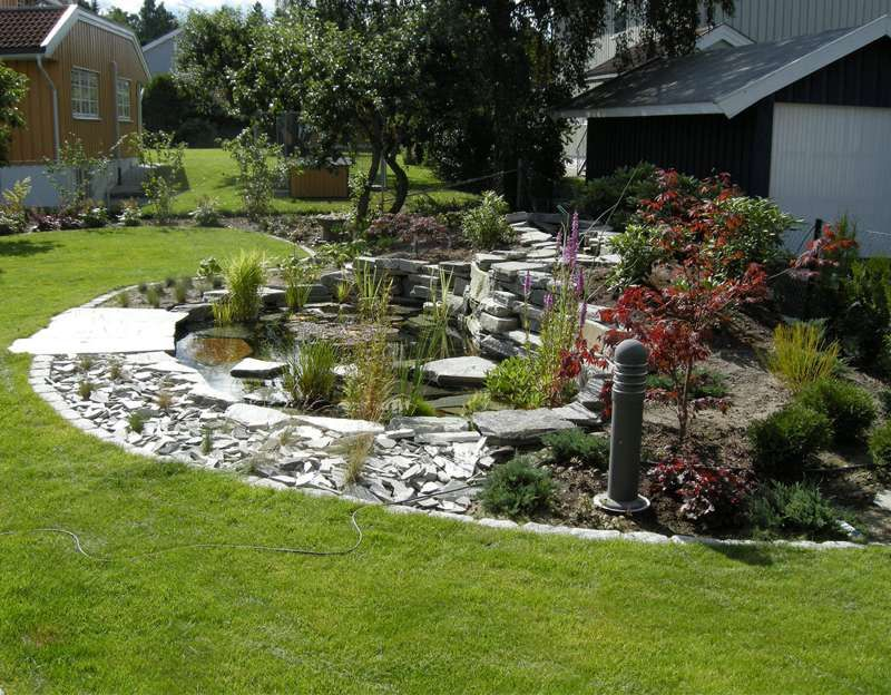 Bassin aquatique de jardin tapes de construction et photos wildlife pond garden - Parterre jardin ...