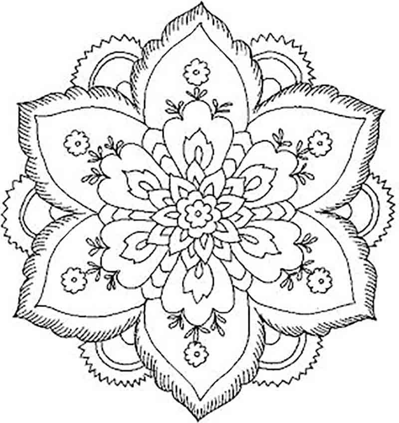 Lotus Flower Mandala Drawing Images