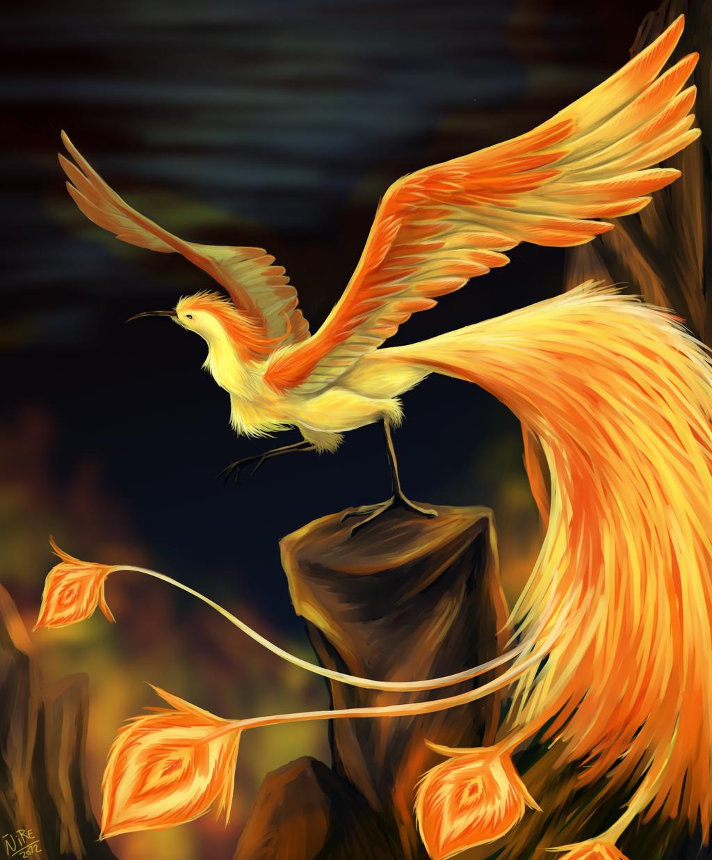 Phoenix by Nothofagus-obliqua.deviantart.com