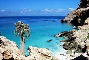 "The Best of Socotra"" camping program"
