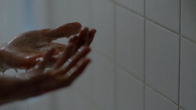 The infamous shower scene