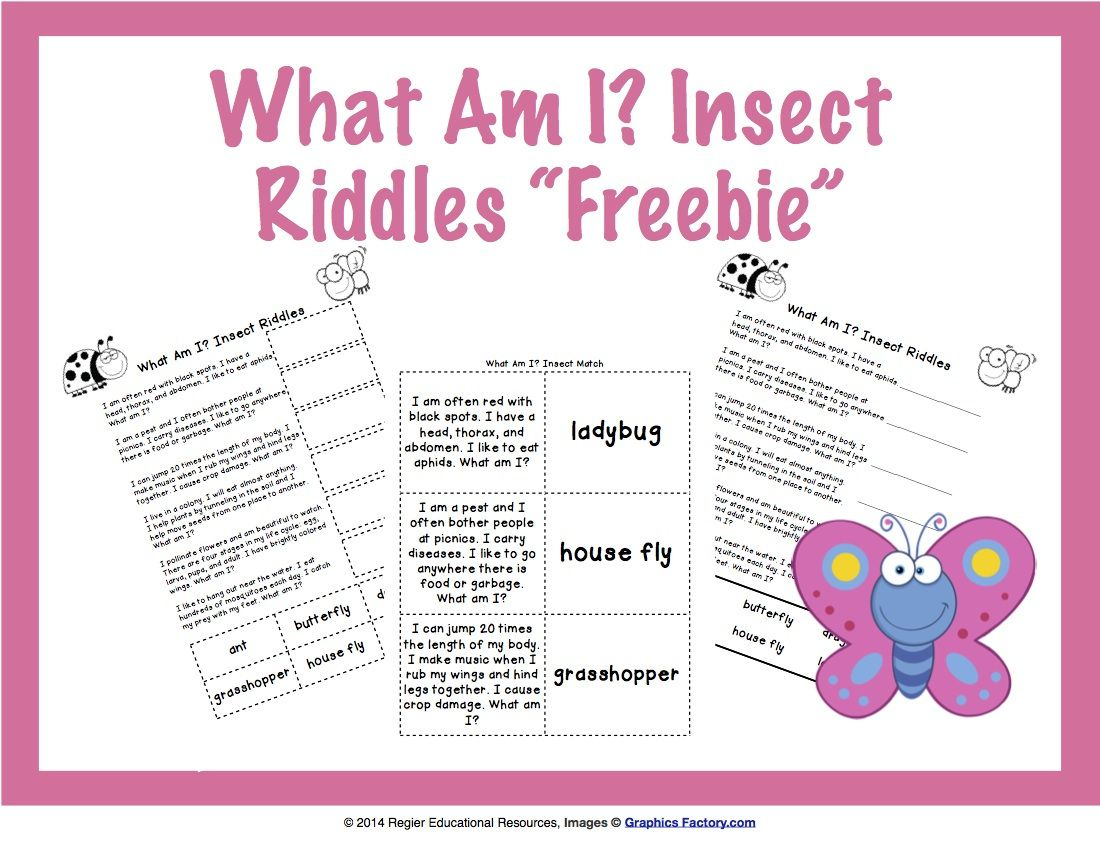 What Am I? Riddles Second grade resources, First grade
