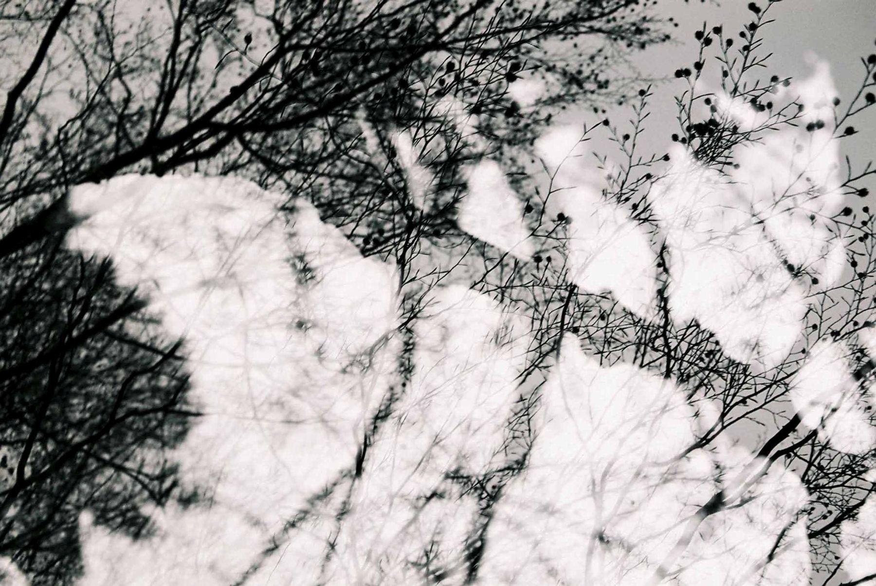 Stille_08