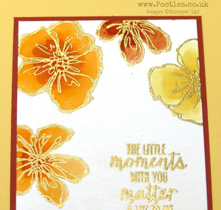 Stampin' up! Demonstrator Pootles - Colour Your World Blog Hop - Penned & Painted With Gold Embossing card. Click through for more details and more projects!