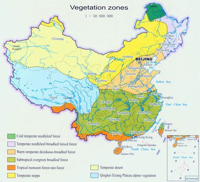 China On Map Of Asia.China Vegetation Map East Asia Map China Map Geography Map