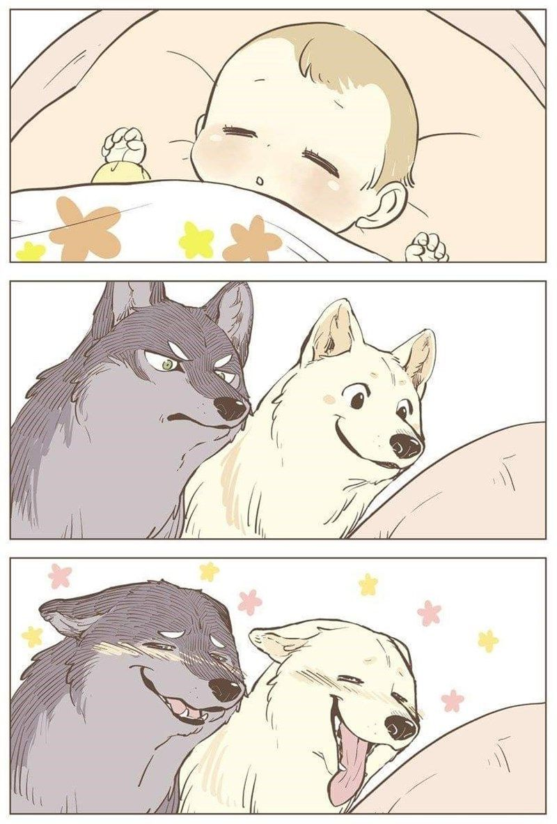 Photo of Probably The Cutest Wolf Comics On The Planet #comics #cutest #planet #probably …