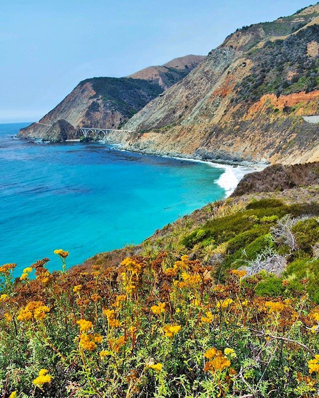 As a company with Plant in our name.. this is a holiday we can get behind! Happy #EarthDay from all of us at #SocialPlant 🌳🍀🌱🌿🍃 #calocals - posted by Social Plant ™ https://www.instagram.com/socialplant - See more of Big Sur, CA at http://bigsurlocals.com