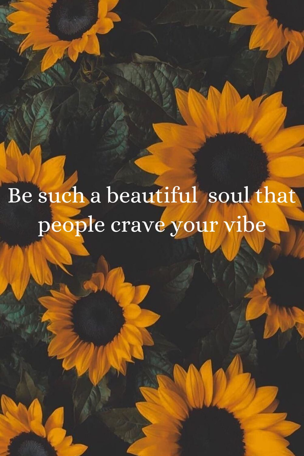 Beautiful Soul Sunflower Pictures Sunflower Wallpaper Sunflower Quotes