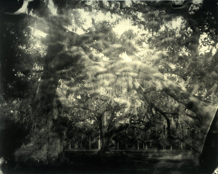 Sally Mann 20