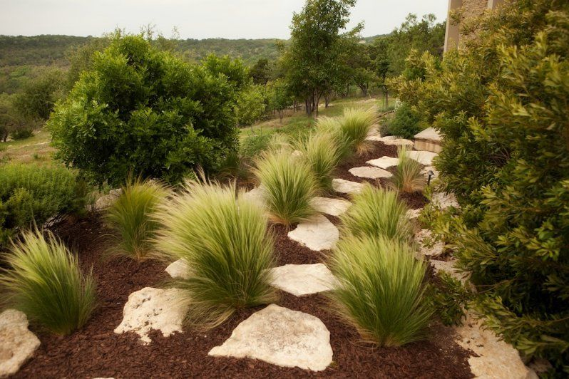 Hill Country Estate Triton Custom Homes Country Landscaping Country Pool Landscaping Austin