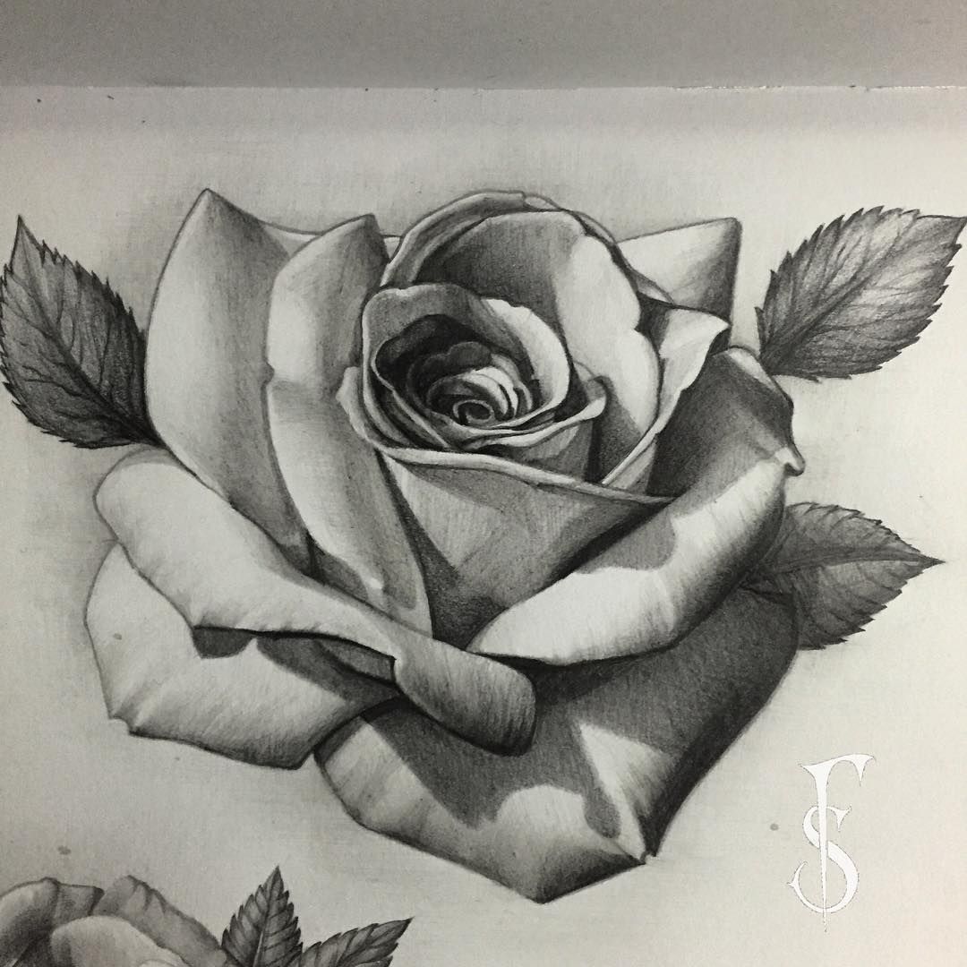 Added Rose Page With Graphite Pencils