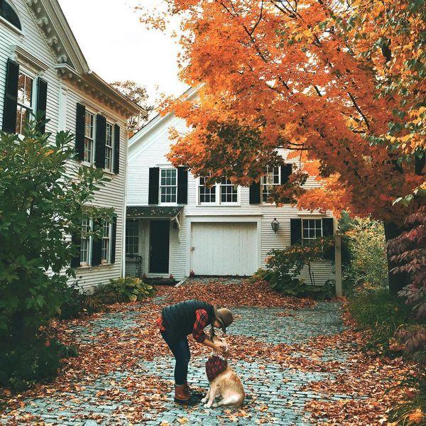 Fall 🍁 Love so many things