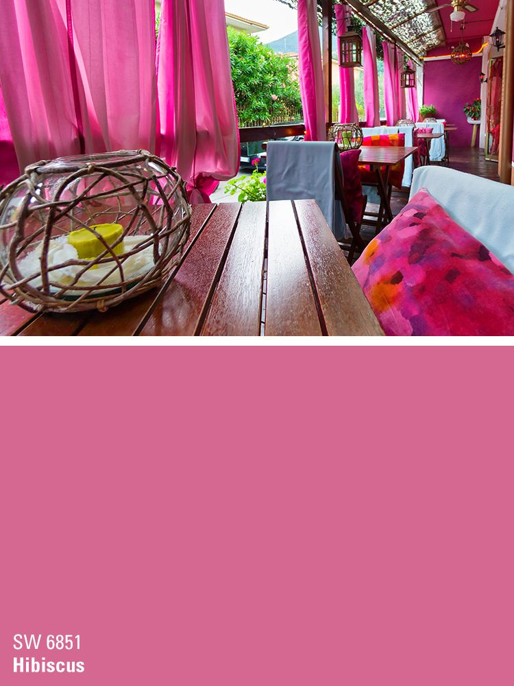 Sherwin Williams Pink Paint Color Hibiscus Sw 6851 Party Inspiration For Paints