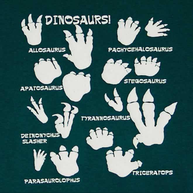 Dino Footprints For Boarder!?! Ideas For The Boys Room - plastik mobe phantastisch