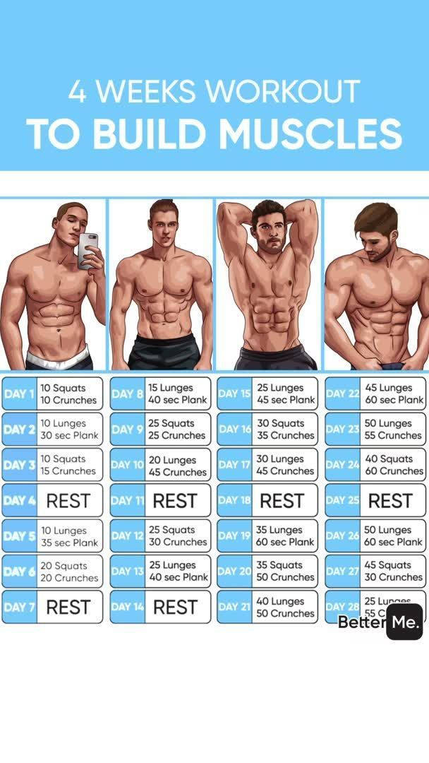 Steroid workout split steroid speed belt v2 0