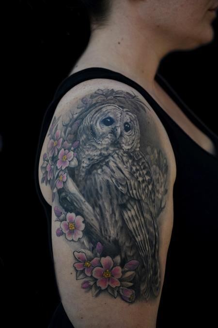 Maximilian Rothert Realistic Barred Owl And Cherry Blossom Tattoo Realistic Owl Tattoo Owl Tattoo Sleeve Quarter Sleeve Tattoos