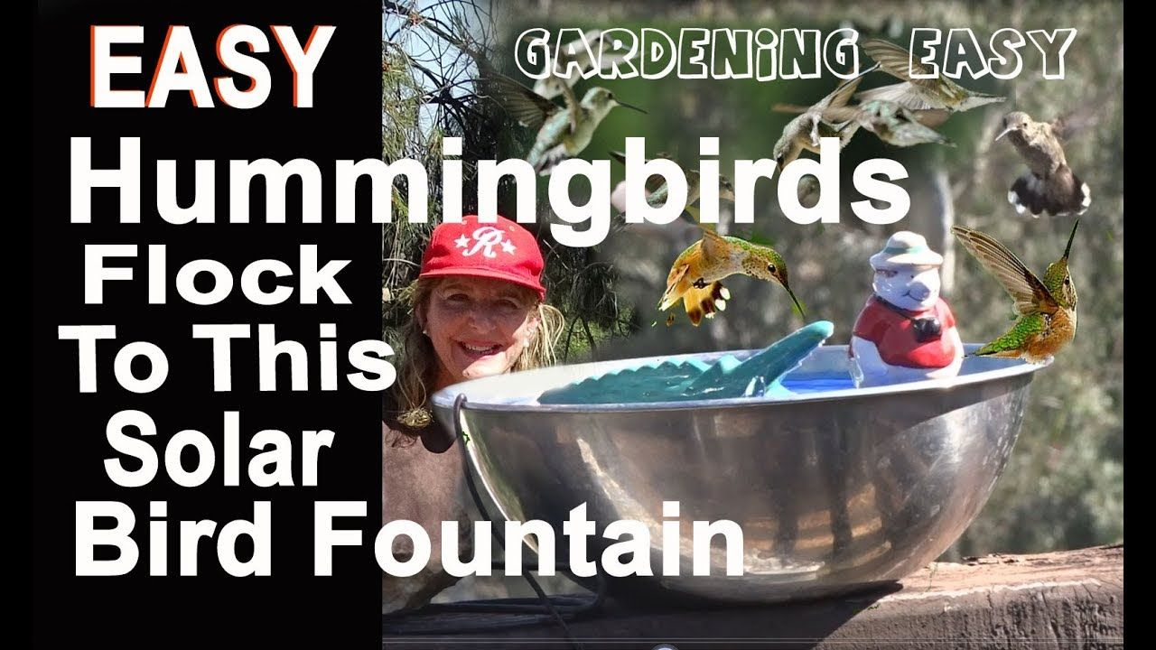 CHEAPHow to Make a 1 EASY SIMPLE Hummingbird Bird Bath