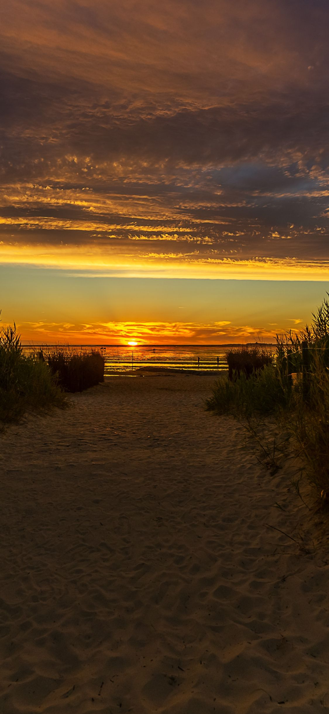 Nature Sunset Beach Grass Pathway Wallpaper Landscape Prints Nature Photography Types Of Photography Hd wallpaper nature reeds grass sunset