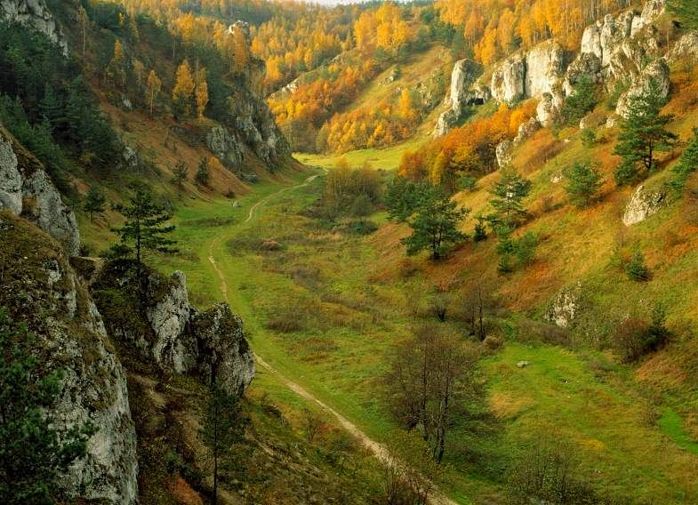 Kobylanska Valley, Poland
