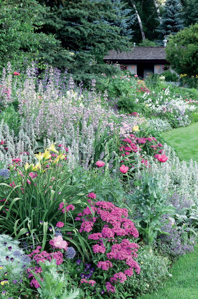 Garden Border Design Ideas For Any Yard