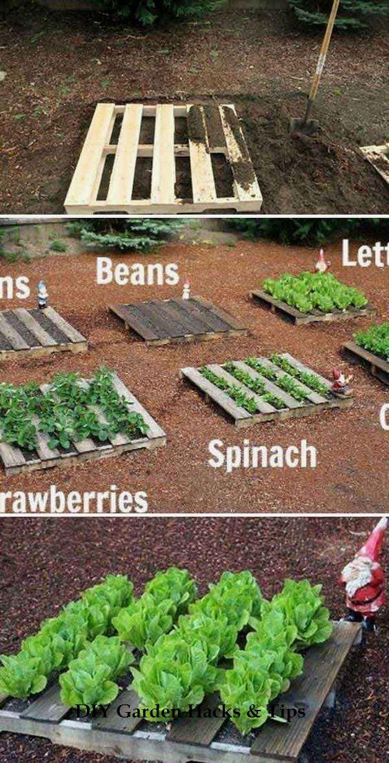 35 Creative Garden Hacks And Tips In 2020 Gartenprojekte Mit Holzpaletten Bepflanzung