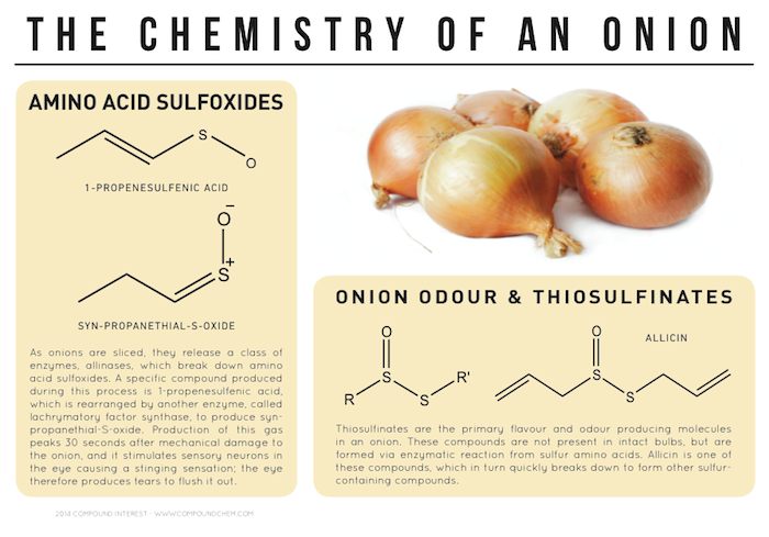 chemical composition of garlic pdf