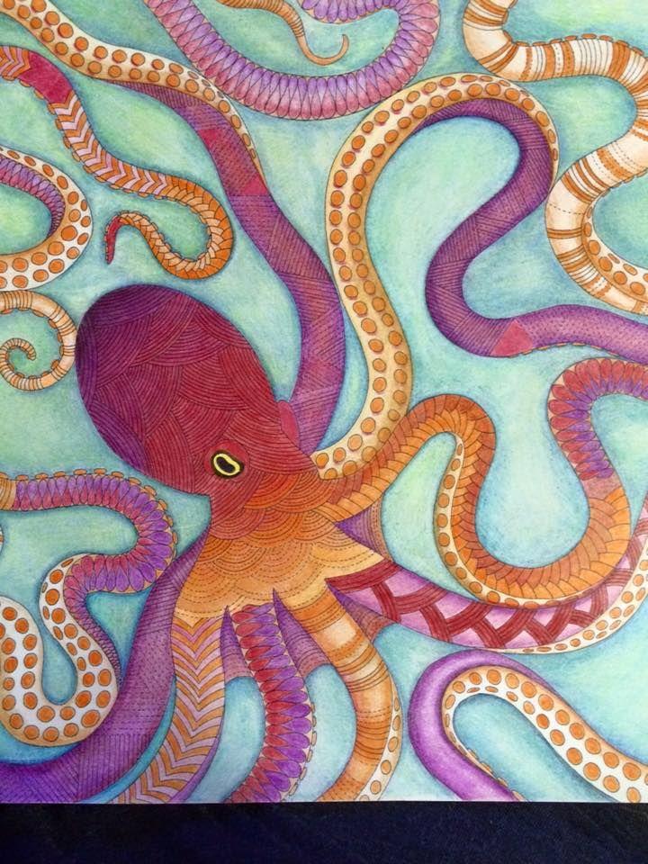 Octopus Animal Kingdom Millie Marotta Milliemarotta