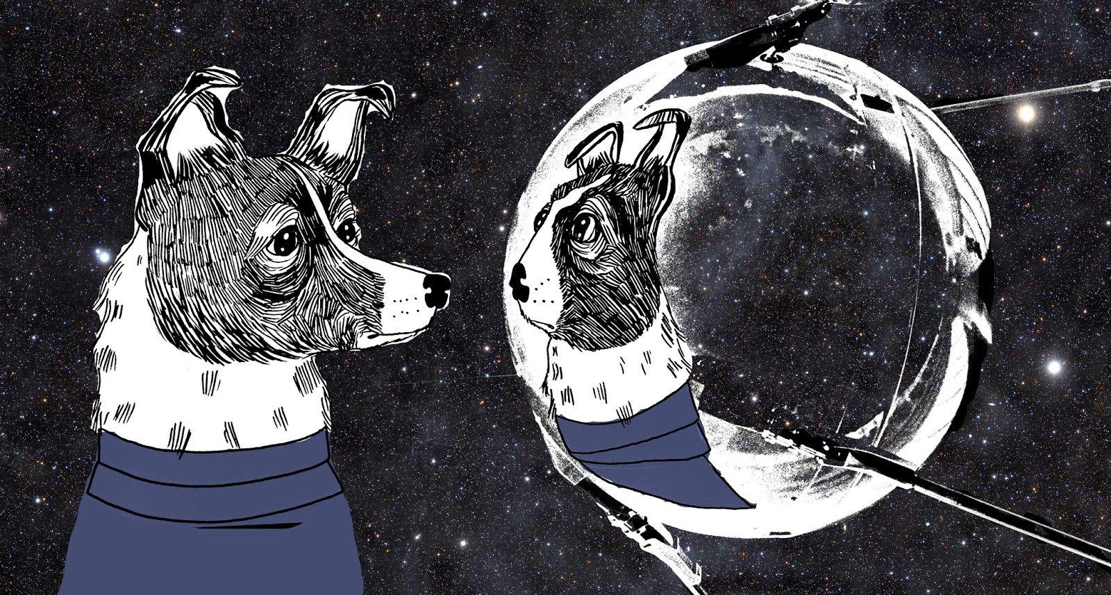 Image result for laika space dog