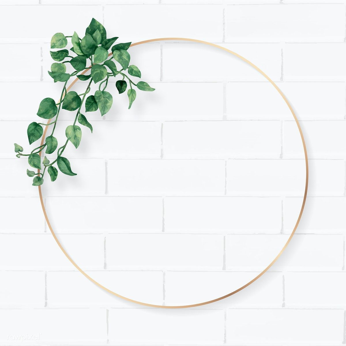 Download premium vector of Blank round camellia leaves frame vector by Ning about folhas, tropical circle frame, plant brick, green circle, and garden 1208566