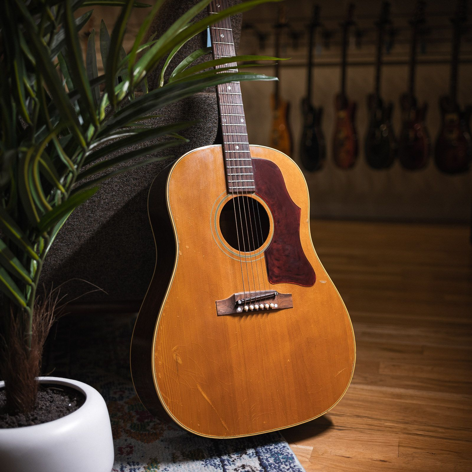Gibsons unsung hero the j50 natural