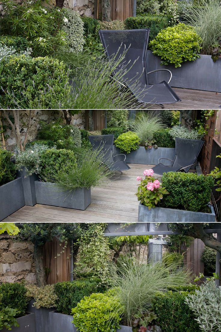Small Terrace | Garden Ideas & Projects | Terrace garden ...