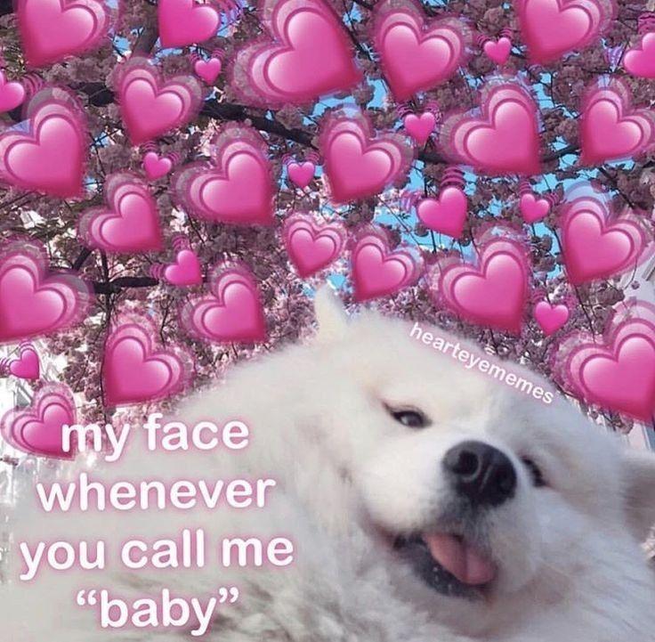 Pin By Dangerous Women On Rostos De Meme Apaixonado Cute Love Memes Cute Memes Love Memes